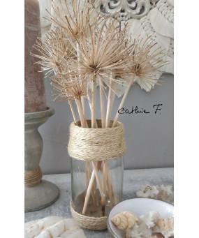 Vase corde TRANSBOMBY